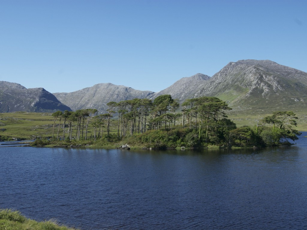 Island with Trees, Connemara